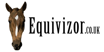 Delivery - Equivizor - Advanced Head Protection For Horses